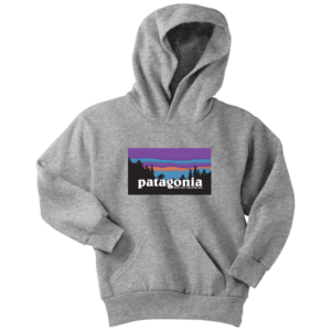Patagonia Logo New Design Youth Hoodie