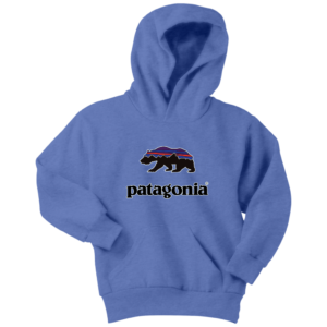 Patagonia Fitz Roy Bear Youth Hoodie