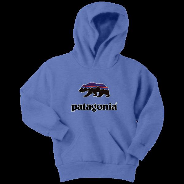 Patagonia Fitz Roy Bear Youth Hoodie