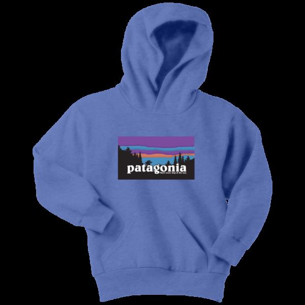 Patagonia Logo New Design Youth Hoodie